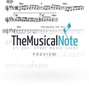 OhToToh Avraham Fried Music Sheet