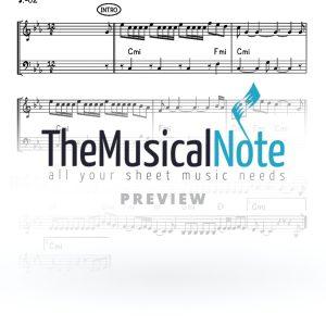 Ribon Hoolomim Avraham Fried Music Sheet