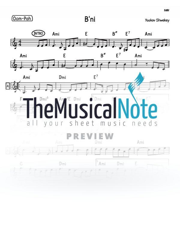 Bni Yaakov Shwekey Music Sheet