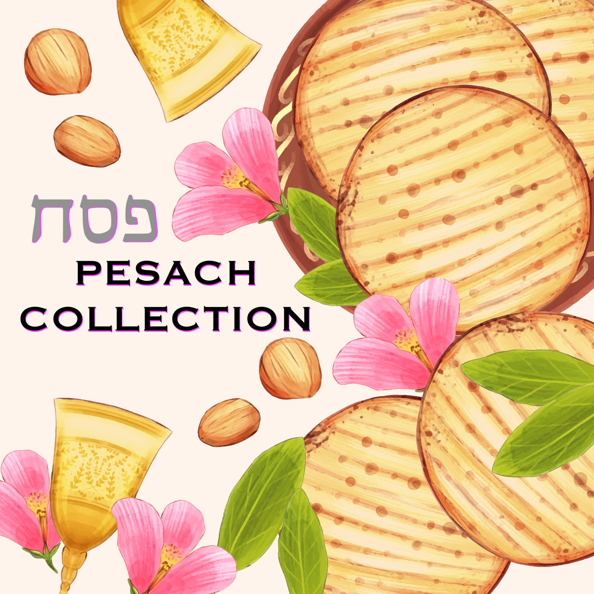 Pesach Passover Collection